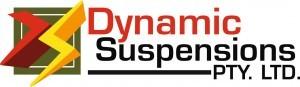 Logo-DS-Final-300x87